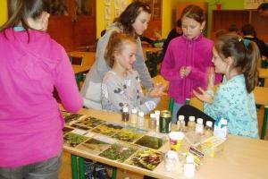 Zemědělství - program Zemědělského svazu ČR